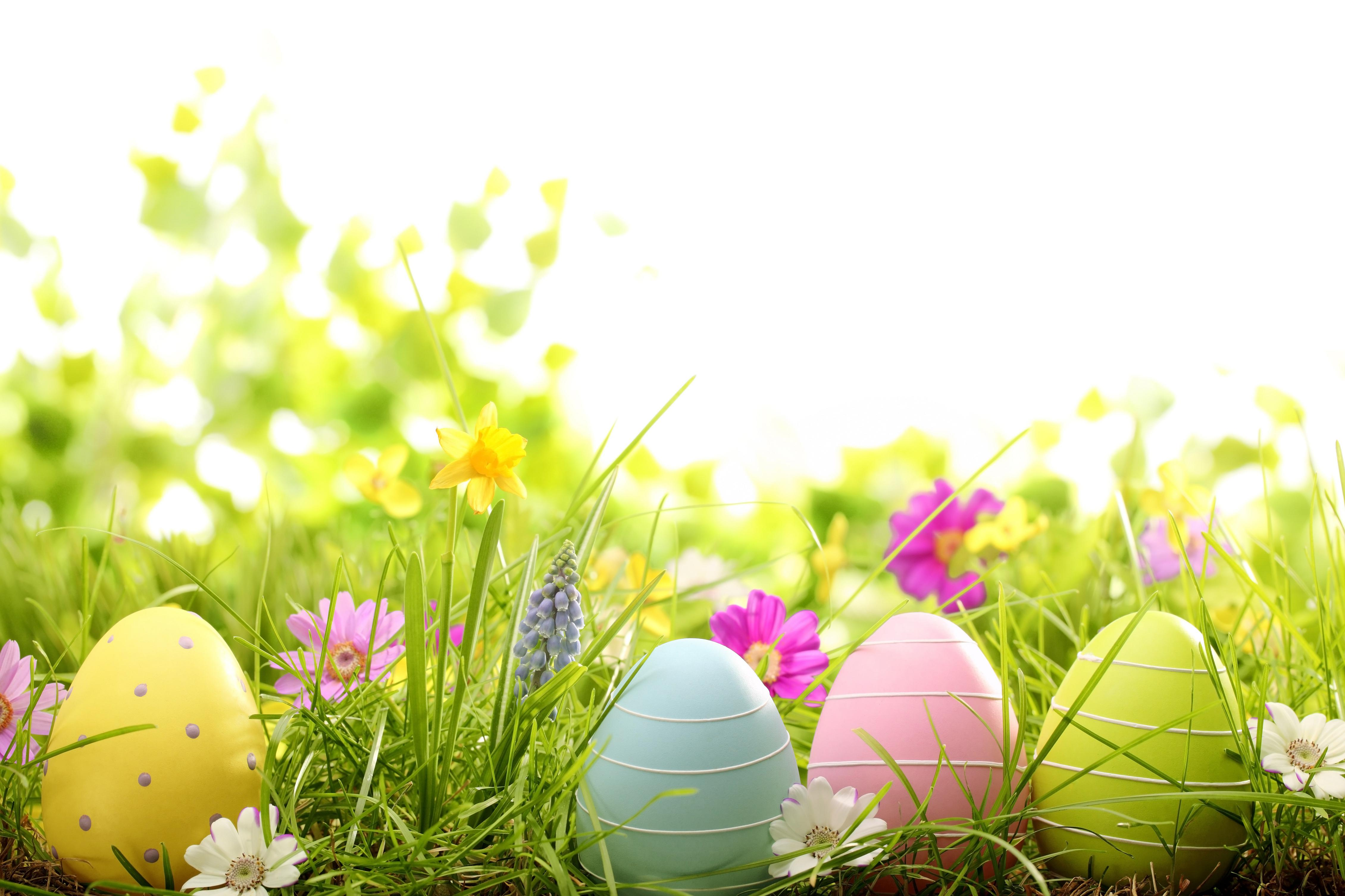 Easter background vector free free vector download 41698
